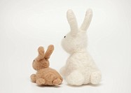 Stuffed toy rabbits