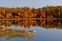 Autumn reflections in beaver pond. Greater Sudbury, Ontario, Canada.