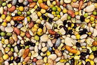 abstract of beans and lentles