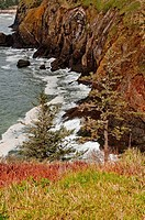 This beautiful seascape is the Pacific Ocean on steep cliffs in Washington State near Cape Disappointment Waves are hitting the rocks at the bottom of...