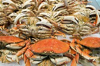 Fresh Dungeness Crab at Pike Place Market.