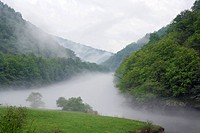 Foggy Valley, Argentat, Correze, France