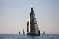 A group of sailboats in the annual Swiftsure International Yacht Race.