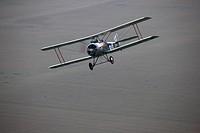 A replica Sopwith 1_1/2 Strutter over New York State.