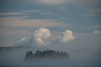 Fog sits over water surrounding Harbor Island, Maine.