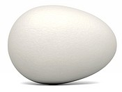 White Egg Landscape
