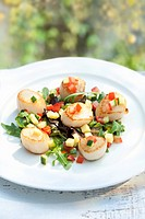 Seared scallop salad.