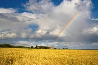 Rainbow over Barley Field and Windmill at Weybourne Norfolk UK