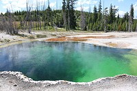 Hot Spring, West Thumb Geyser Basin, Yellowstone Lake, Yellowstone National Park, Wyoming, USA