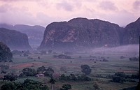 An early morning landscape in Cuba´s primary tobacco region.