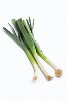 Three whole stems of green leeks, Allium porrum, isolated white background