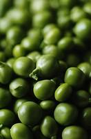 mini veggies
