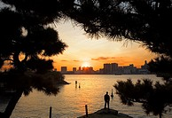 Waterfront of Tokyo, as seen from Daiba Park in Odaiba artificial island Tokyo city, Japan, Asia