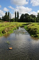 Bulbourne river and moor, Hemel Hempstead, Hertfordshire, UK