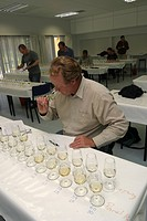 Wine Tasting New Zealand