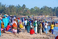 Senegal _ The Small Coast _ Mbour _ Fishing port and return of the fishermen