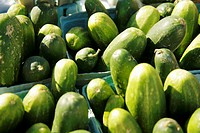 Organic Cucumbers at Farmer´s Market