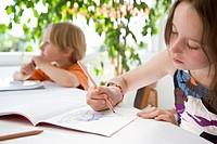 Boy and Girl Doing Homework
