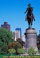 on the Boston Commons Public Park