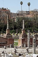 RUINS OF THE THERMAL BATHS, THE FORUM, ROME
