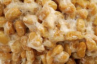 Natto, close_up
