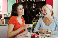 Female friends having coffee at cafe