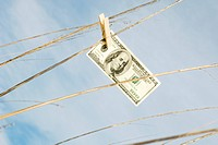 One hundred dollar bill hung on tall grass with clothes pin