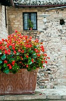 Picturesque corner of the medieval small town of Spello, Umbria, Italy