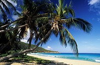British Virgin Islands, Tortola, Elisabeth bay