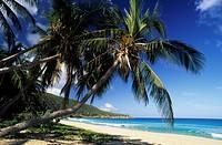British Virgin Islands, Tortola, Elisabeth bay