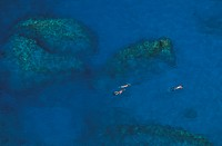 British Virgin Islands, Virgin Gorda, The Baths, people snorkeling aerial view