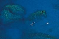 British Virgin Islands, Virgin Gorda, The Baths, people snorkeling aerial view