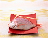 Uncooked red sea bream