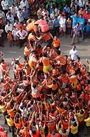 Dahi Hundie , Human Pyramid , Janmashtami janmashtami gokul ashtami govinda Festival , Bombay Mumbai , maharashtra , india NO MR ,NO PR