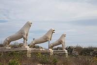 Greece. Cyclades Islands. Delos, Lions of Delos.