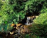 Thailand, garden