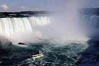 Usa, N.Y., Niagara Falls. Horse