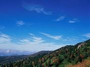 Shiga Plateau, Nagano Prefecture, Japan