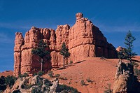Usa, Utah, Red Canyon