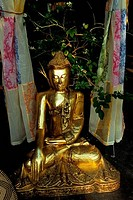 USA, MICHIGAN, NEAR DETROIT, ROYAL OAK, STORE WINDOW WITH BUDDHA STATUE