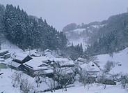 Snowscape, Nakano, Nagano, Japan