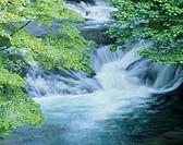 Waterfall, Yamanashi, Japan