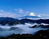 Mt.Fuji And Field Of Cloud, Shizuoka, Japan