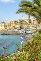 The old quarter and harbour of Bogliasco at the Rivera di Levante in Liguria, North West Italy