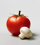 Garden tomatoes with a mushroom