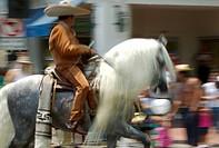 Cinco De Mayo Parade celebrated in Santa Barbara, California,USA