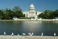 Washington DC, D.C., District of Columbia, U.S. Capitol Building, Capitol Reflection Pool, Capitol Hill, Nation´s Capital