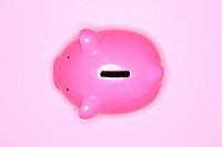 Pink piggy bank on pink background