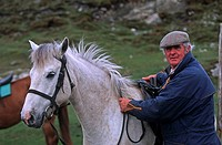 Ireland, man and horse
