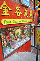 Flower Shop colorful in Chinatown New York City